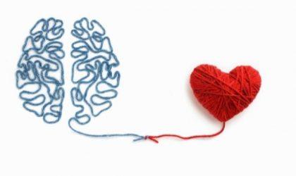 Srce-mozak